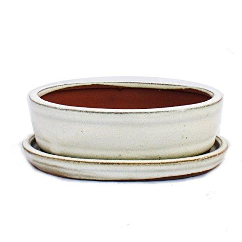 Bonsai-Schale mit Unterteller Gr. 2 - hellbeige - oval - Modell O7 - L 15,5cm - B 12cm - H 4,5cm
