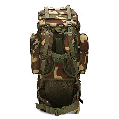 LF&F Backpack Camping outdoor Zaini Borse Versione aggiornata Alpinismo professionale Passeggiata professionale Ampia capacità Comodo Breathable Oxford Tattico impermeabile 65L doppio sacchetto di spa F