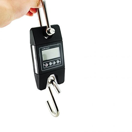 Denshine Báscula Peso 300 kg/x 100 G Mini Digital con gancho para pesca Industrial Crane escala