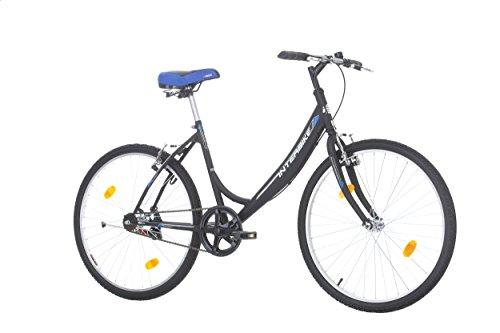 Bicicleta de Paseo Interbike CITY LIFE 26″ Single speed
