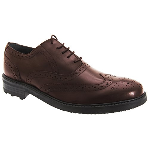 Roamers Mens 5 Eyelet Brogue Oxford Leather Shoes (12 UK) (Oxblood)