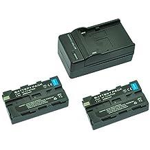 MP power @ 2X Reemplazo Li-ion batería NP-F550 NP-F570 NP-F330 NP-F530 2300mah 7,2V + cargador para Sony CCD-RV100, CCD-RV200, CCD-SC5, CCD-SC6, CCD-SC55, CCD-SC65, CCD-TRV66, CCD-TRV67, DCM-M1, DCR-SC100, DCR-TR7, DSC-CD250, DSC-CD400, DSC-D700, DSC-D770, D-V500, EVO-250, GV-A100, GV-A500, HDR-AX2000, HDR-FX7, HDR-FX1000, HVR-M10P, HVR-M10U, HVR-V1J, HVR-V1U, HVR-Z7U, HXR-NX5U H-126 H-160