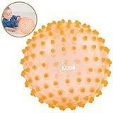 LUDI - Balle sensorielle violette pour l'éveil de bébé. Adaptée aux enfants dès 6 mois. Gros picots tendre faciles à mordiller. Balle de jeu ou de massage.  Diamètre : 20 cm - réf. 30017