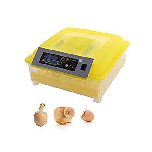 48 Hatcher incubatrice Digitale per Uova con Controllo Automatico della Temperatura di Rotazione delle Uova per Pollo, Polla da pollame per polli Anatre oche Tacchino con Display a LED