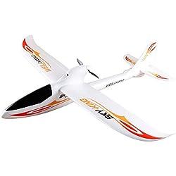 Lanspo_Drone Glider WLtoys F959 Sky King 2.4G 3CH RC Flugzeuge Starrflügler Flugzeug Herrenmode Spiel Flugzeug Fernbedienungen, Marke Offizielle Genehmigung (WLTOY)