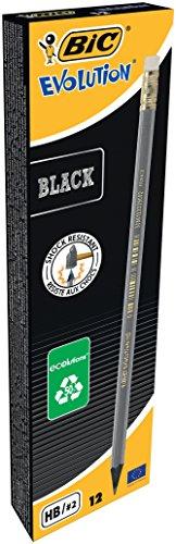 BIC Bleistift ECOlution Evolution – Bleistifte Set Silber – Ergonomischer Stift mit bruchsicherer Mine – Holzfreie, dünne Stifte – 12 Bleistifte mit Radiergummi