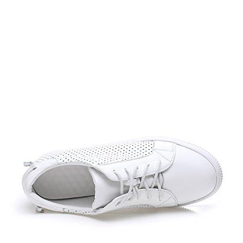 Chaussures plates occasionnelles/Chaussures de mode Joker/La simplicité de chaussures/Chaussures de maille A