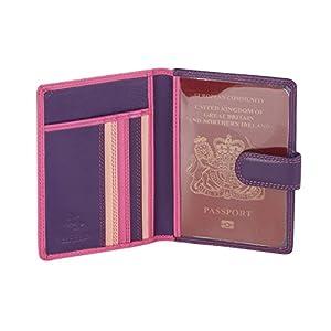 Visconti Leder Damen Passhülle Rainbow Multicolor/Mehrfarbig Passport Cover Case(RB75): (Blue Multi (Blautöne))