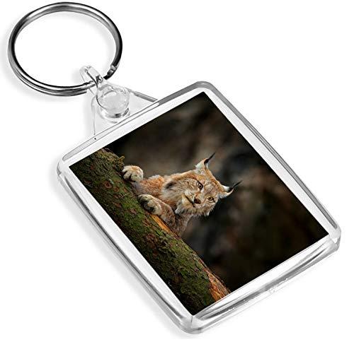 Ziel Vinyl Keyrings Super Lynx Schlüsselanhänger - IP02 - Katze Rocky Mountains Rockies Amerika Gift # 12595 Rocky Lynx