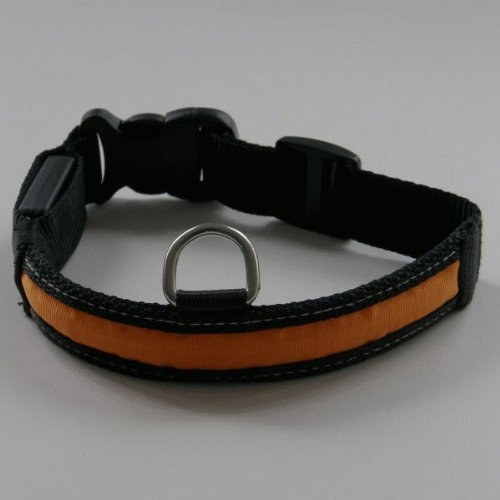 2-TECH - Chiens - LED collier chien de taille: L, orange