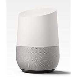 Google Home (Standard)(Versione USA, importato)