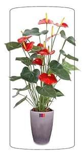 Plante artificielle fleurie Anthurium en pot - plante d intérieur - H.75cm rouge