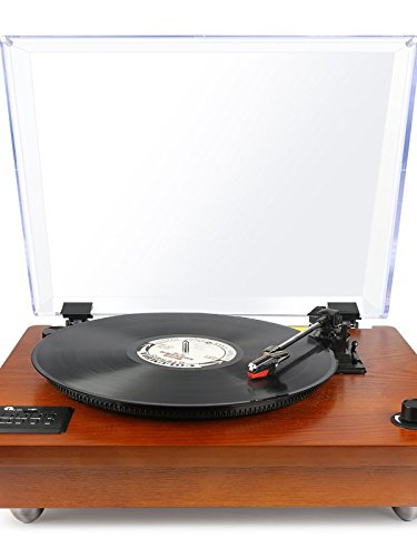 Turntable Review! [Bluetooth, MP3, Vinyl record player] [OV] (Record Mp3)
