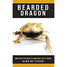 Bearded Dragon: Amazing Pictures & Amazing Facts Book about Bearded Dragon (English Edition)