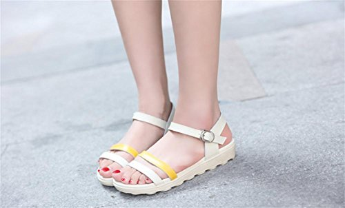 pengweiSandali estivi semplici piatti con le scarpe da donna scarpe romane 3