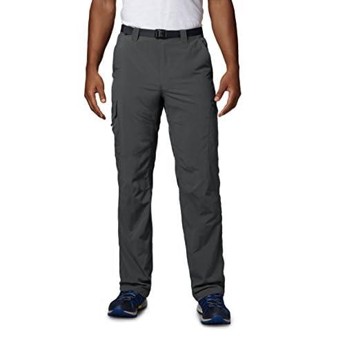 41vjiGGgZML. SS500  - Columbia Men's Silver Ridge Cargo Pant Trousers