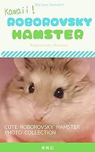 Kawaii!! Roborovsky Hamster: Hamster photographs