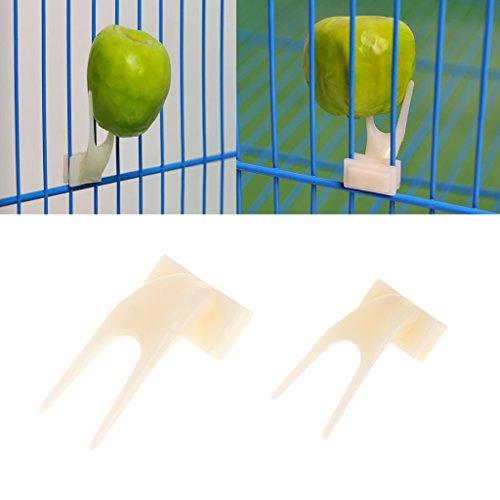 Autone Futterstation für Vögel, Papageien, Obstgabeln, für Haustiere, Kunststoff, 2 Stück, gelb, Größe S
