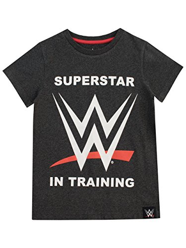 WWE Jungen World Wrestling Entertainment T-Shirt Grau 146