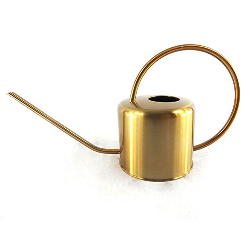 WANGXN Arroser L'outil De Jardinage en Acier Inoxydable d'or De Longue Durée Pot D'arrosage De Bouche De Style Moderne,Gold