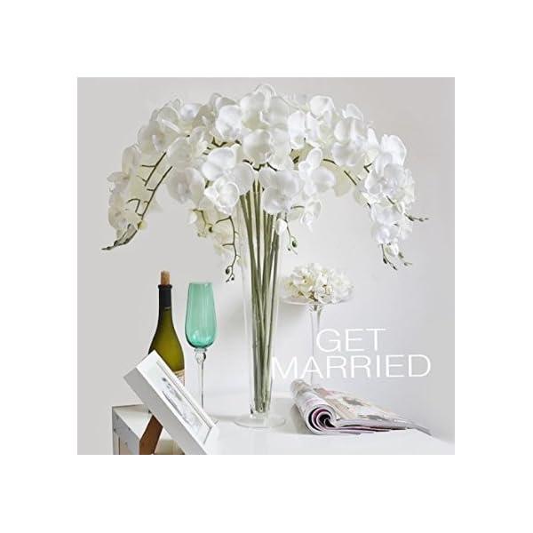 Calcifer® 10pcs Artificial 31«seda Phalaenopsis orquídeas tallo Ramos Artificial flores para boda fiesta hogar jardín decoración (blanco 1)
