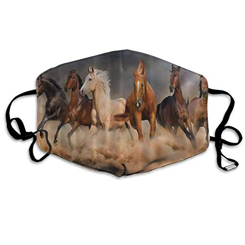 Masken,Masken für Erwachsene,Horse Masks,Washable and Reusable Cleaning Mask,For Allergens,Exhaust Gas,Running,Cycling,Outdoor Activities Adult-jason Maske