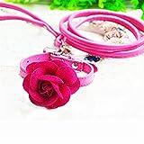 JIAER Flower Pet Halsband Leine Stilvoll und Süß Stark und Abriebfest Nicht Leicht Zu Verlieren Verstellbar Rosarot S 27-33Cm
