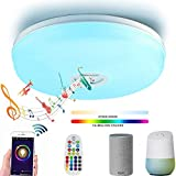 WRMING LED Deckenleuchte mit Bluetooth Lautsprecher RGB Deckenlampe Alexa Echo&Google Home Moderne Musik Deckenleuchte Geeignet für Wohnzimmer Küche Studie Büro