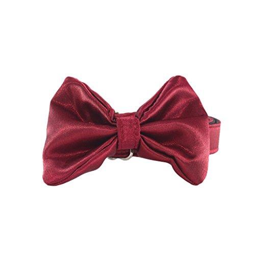 Hundehalsband aus Satin mit Hundefliege Hochzeit, Fliege für Hunde - Halsschleife - PREMIUM (mit Metallverschluss) (XL, Rot)