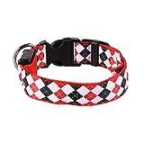 Dhrfyktu Pet LED Hundehalsband Leuchthalsband Hundegeschirr Pet Halsbänder Für Kleine Große Hunde (Color : Red, Size : XL)