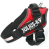 julius-k9 ID