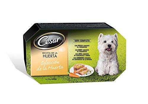 César Selección de La Huerta Tarrinas para Perros - 600 gr