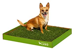 DoggieLawn Disposable Dog Potty, SPACIOUS 24.75x21 inches *REAL* grass