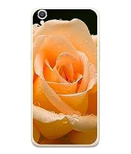 PrintVisa Beautiful Rose High Gloss Designer Back Case Cover for Oppo A37