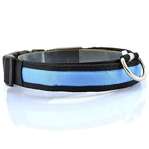 Halsbänder LETTER LED Nylon Hund HaustierHalskette Anti-verloren blinkt Glitzer Halsbänder (M, (Einfache Katzen-kostüm Für Arbeit)