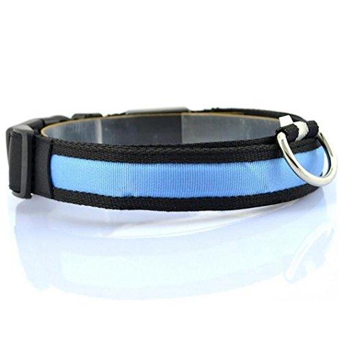 ED Nylon Hund HaustierHalskette Anti-verloren blinkt Glitzer Halsbänder (M, Blau) ()
