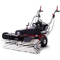 Limpar 102 B y S - Barredora con motor y cepillo de invierno