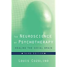The Neuroscience of Psychotherapy: Healing the Social Brain