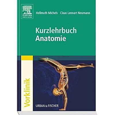 PDF] Kurzlehrbuch Anatomie (Kurzlehrbücher) KOSTENLOS DOWNLOAD ...