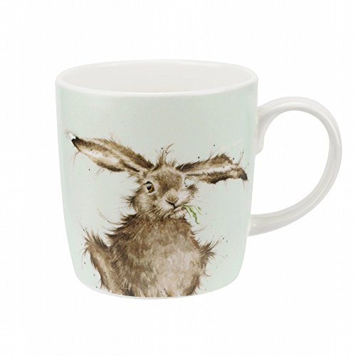Wrendale Hare Brained (Hare) Royal Worcester Fine Porcelain