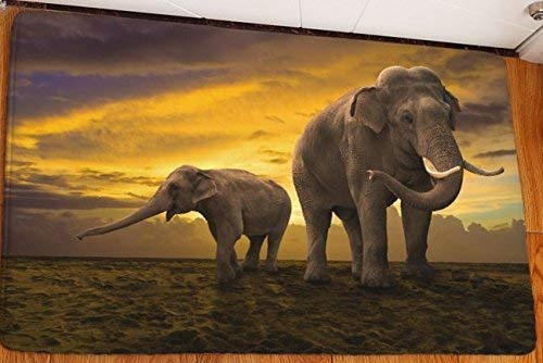 YMWLKE Manta 3D Elefantes Animal Salvaje Carprt Alfombra Alfombra Alfombra Pad Antideslizante...