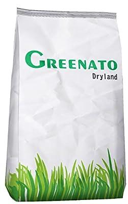 Rasensamen Greenato Dryland dürreresistenter Rasen Grassamen Rasensaat Gras Grassaat von Greenato bei Du und dein Garten