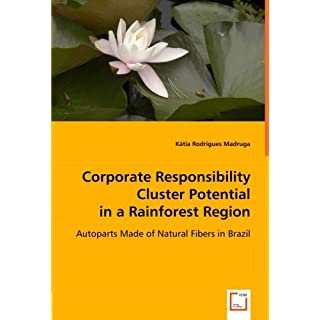Corporate Responsibility Cluster Potential in a Rainforest Region: Autoparts Made of Natural Fibers in Brazil