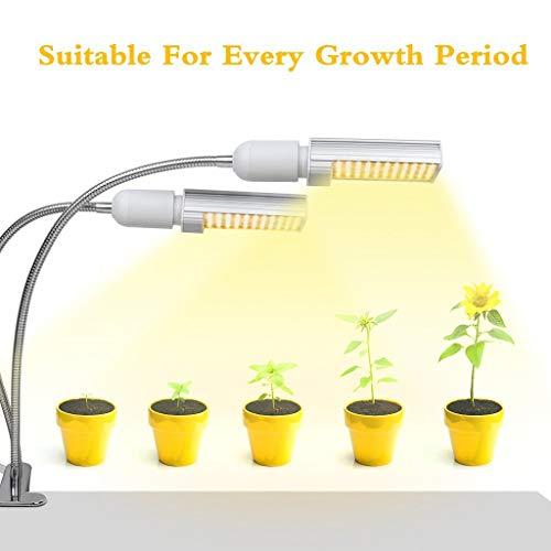 ZWW Vollspektrum-LED, Lampe Maispflanze Licht Innentopf Sukkulenten Füllen Licht - 50w Hps Lampe