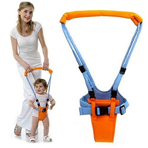 Loikero123 Kleinkind Learning Walker Geeignet für Baby Kinder 0-2 Jahre alt Sicherheitsleinen (Learning Baby Walker)