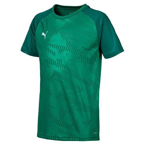 Puma Kinder Cup Jersey Core Trainingsshirt, Pepper Alpine Green, 140