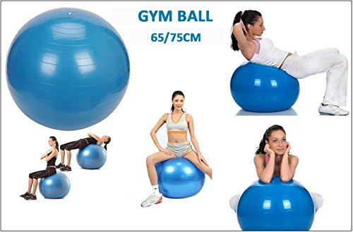 Cpixen Exercise Ball Professional Grade Anti Burst Exercise Equipment for Home, Balance, Gym, Core Strength, Yoga, Fitness With Pump