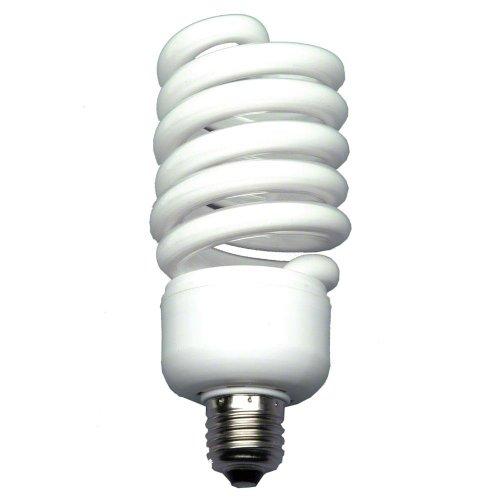 Walimex Spiral-Tageslichtlampe (50 W, entspricht 250 W) für Studio- und Produktfotografie - 50w Spiral