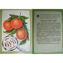 Postal Publicidad - Advertising Postcard : LAS SERPETAS DEL NARANJO Y LIMONERO - Dibujo de M.González Tolsá