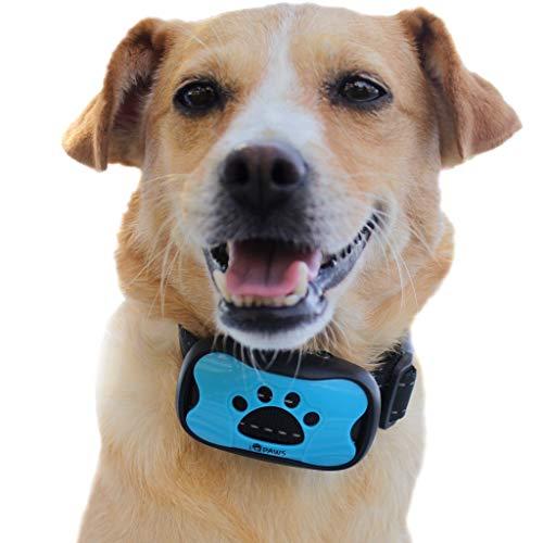 Collare per Cani antiabbaio iQpaws – per Cani Taglia Grande e Taglia Piccola – Collare antiabbaio con 7 Livelli di Suoni e Vibrazione – Guinzaglio Cane Grande e Cani Piccoli – Accessori per Cani